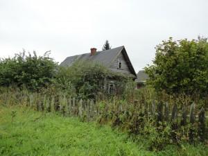 Дом в зарослях травы и деревьев