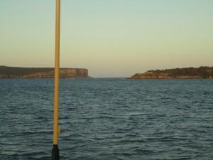 Выход в Тасманово море